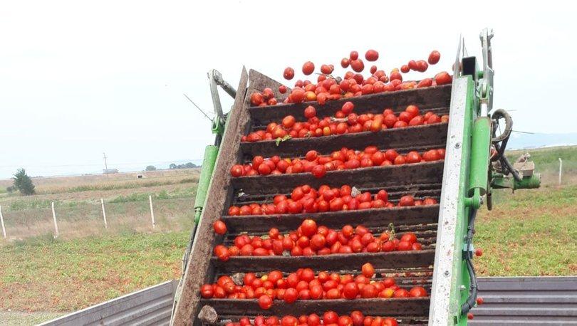 Tat Gıda dijital tarıma 11 milyon TL yatıracak
