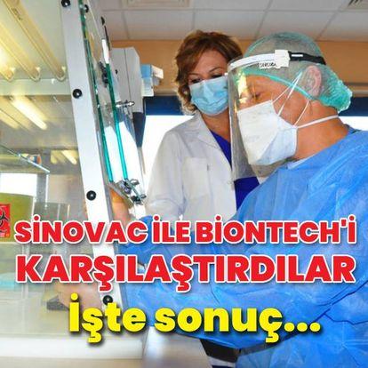 Sinovac ile Biontech aşıları karşılaştırıldı! İşte sonuç...