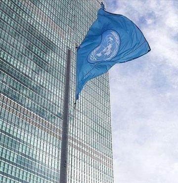 Birleşmiş Milletler (BM), Türkiye