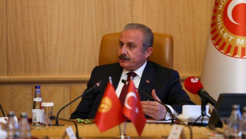 TBMM Başkanı Mustafa Şentop Şentop, İtalya'da ANSA ve Nova ajanslarına ayrı ayrı röportaj verdi