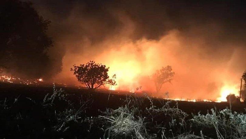 Muğla'da yıldırım düştü; orman yangını çıktı! - Haberler
