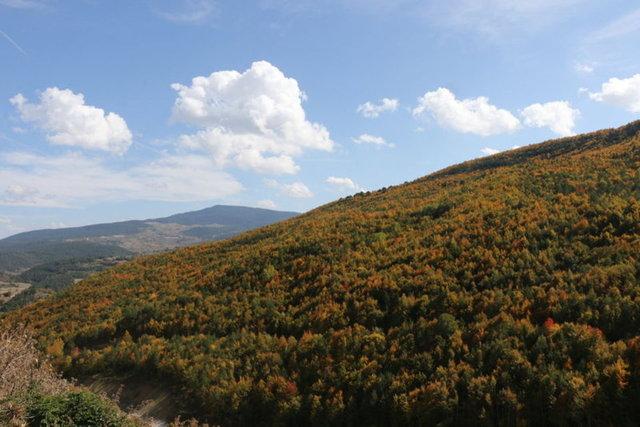 Mudurnu Dağları'nda sonbahar renkleri