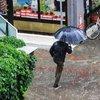 4 il yağmurlu, Marmara ve Ege fırtınalı