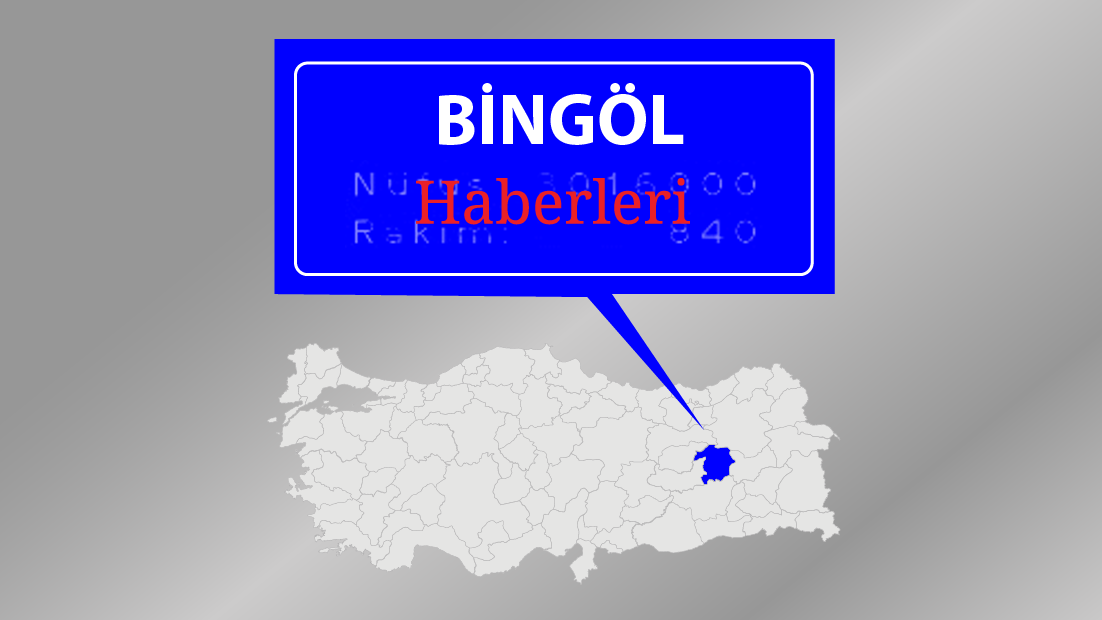 Bingöl'de 3 ayda 2 bin 688 şahsa işlem yapıldı