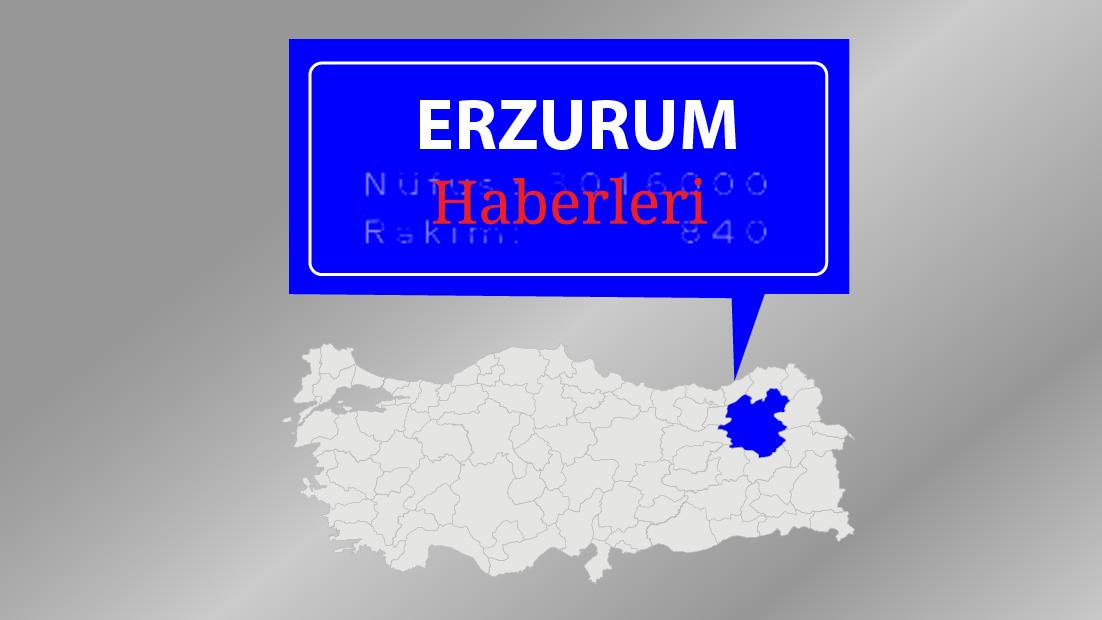 Erzurum merkezli 4 ilde kaçakçılık operasyonu