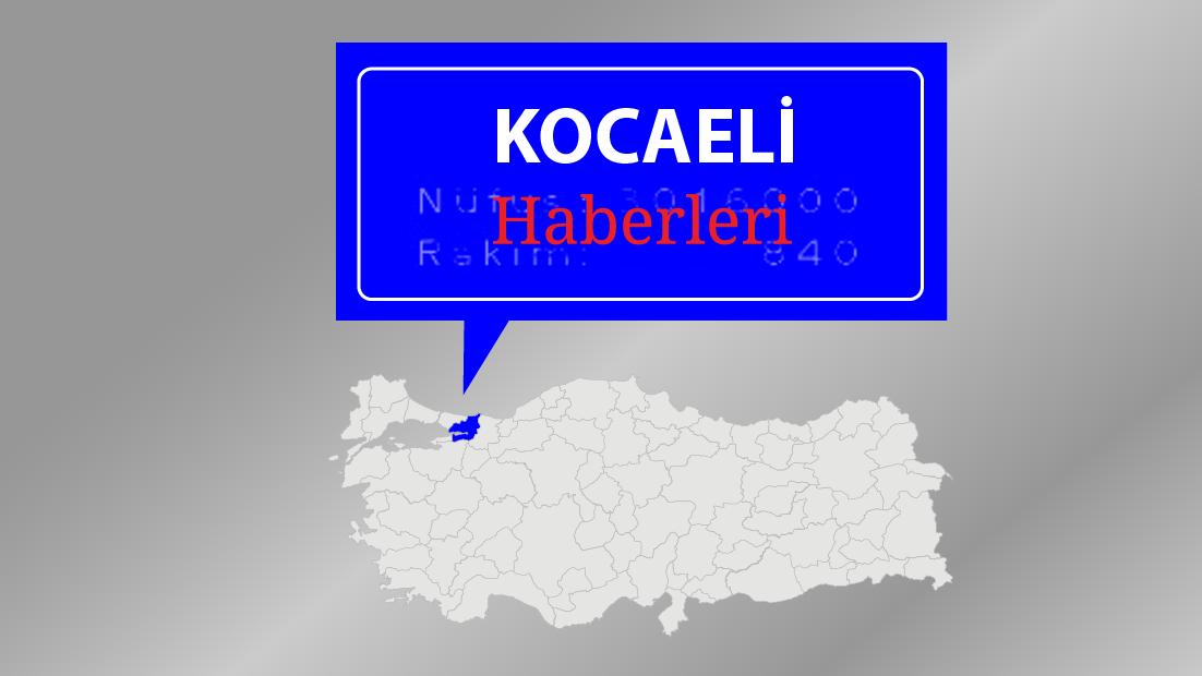 Kocaeli'de sebze yüklü tır devrildi: 1 yaralı