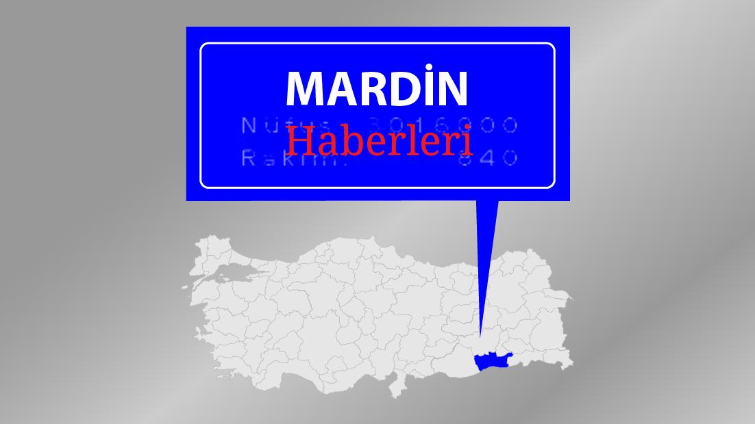 Mardin'de terör operasyonu: 14 gözaltı