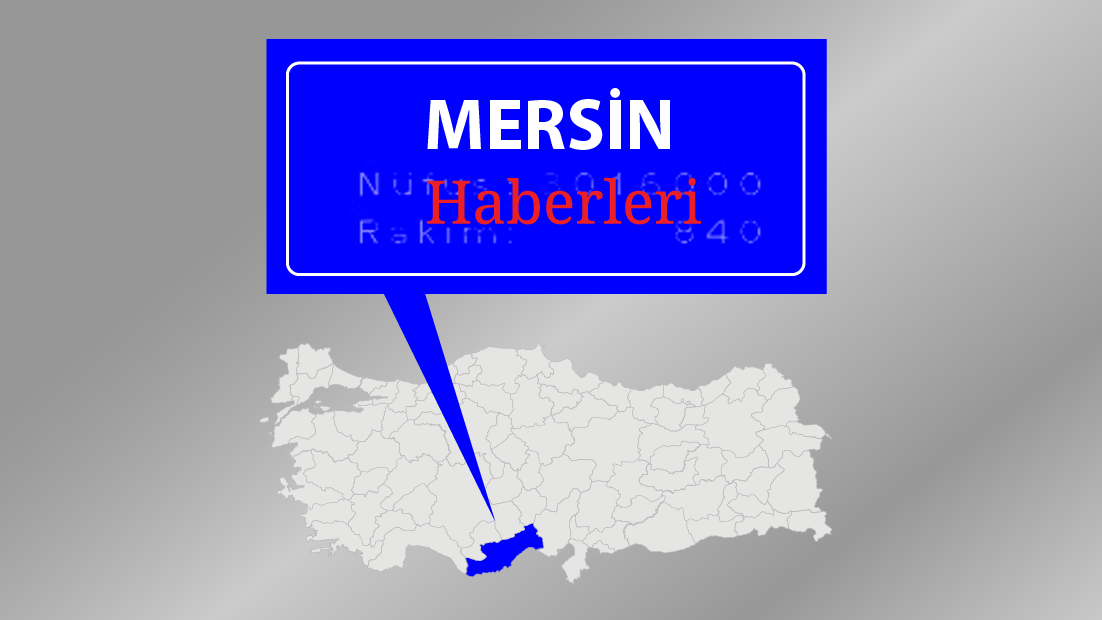 Mersin'de FETÖ/PDY operasyonu