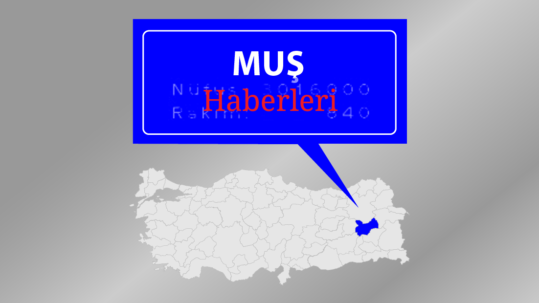 Muş'ta HDP 3, AK Parti 1 milletvekili çıkardı