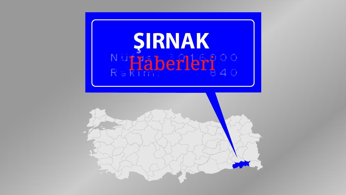 Şırnak'ta terör operasyonları