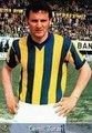 Fenerbahçe adına Beşiktaş'a en fazla golü ise 19 golle Cemil Turan kaydetti.