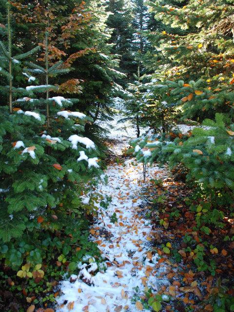 En iyi 10 kış tatili