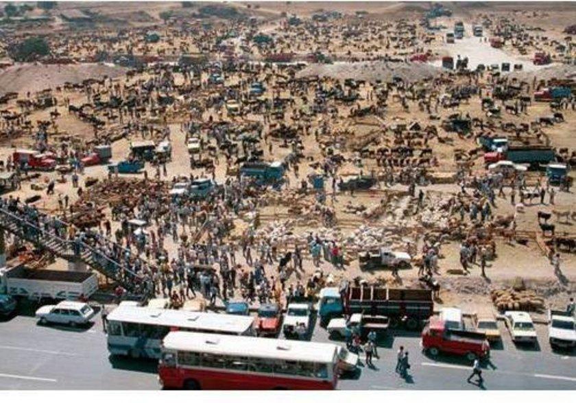 <p>Fotoğrafta bugün çok katlı binaların, metro istasyonunun yer aldığı Şirinevler'in karşısındaki Ataköy 7. ve 8. kısımların bulunduğu 1985 yılında çekilmiş fotoğraf görülüyor... Bir kurban pazarı...</p>
