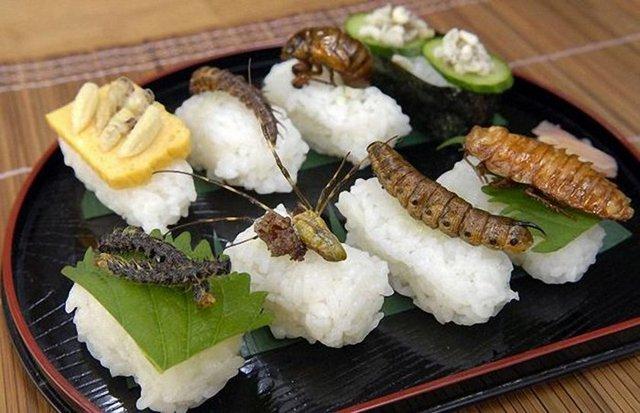 farmapest gıda olarak tüketilen böcekler ile ilgili görsel sonucu