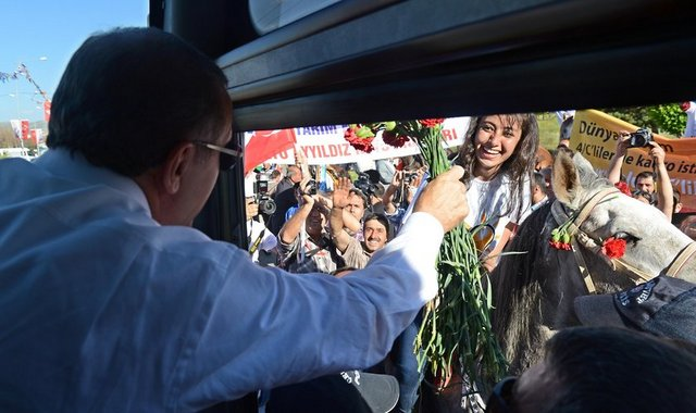 TURQUIE : Economie, politique, diplomatie... - Page 6 2ea59962eab321655e6eeca33ff11261_k
