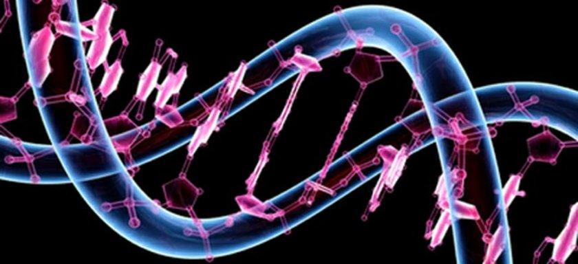 Araştırma 6 bin gönüllü ikizin kan örnekleri incelenerek yapıldı.