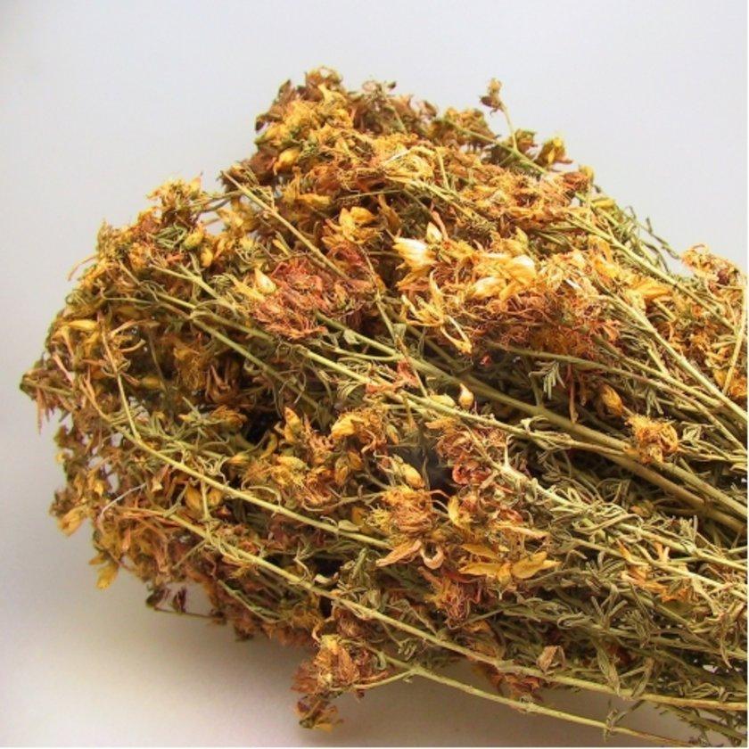 Sarı kantaron, depresyon ve ülsere karşı oldukça etkili ve güvenilir bir bitki.