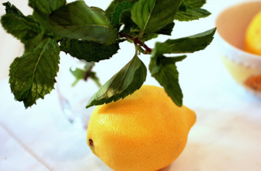 1. Tercihe göre bir veya en fazla iki tatlı kaşığı kurutulmuş ve ufalanmış nane ve bir bardak suya cezveye katılır.\n2. Sonra güzelce yıkanmış bir limonun dörtte biri veya en fazla yarısı dilimlenerek cezveye katılır.