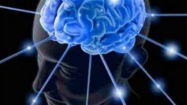 Uludağ Üniversitsi'nde 'NBeyin' adlı sunumda öğrencilere beyinin çalışma sistemleri hakkında bilgi veren Yıldırım Beyazıt Üniversitesi Tıp Fakültesi Fizyaloji Anabilim Dalı Başkanı Doç. Dr. Sinan Canan, beynin 2.5 milyon gigabayt hafızası bulunduğunu belirterek, bunun 300 yıl süren HD filmin kaydedilmesi anlamına geldiğini söyledi.
