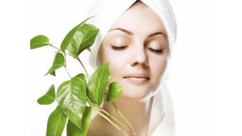 Defne yağlı sabun cilt güzelliği için kullanılır. Defne sabunu derideki gözenekleri açıp rahatlatır. Kuru cildi nemlendirir.