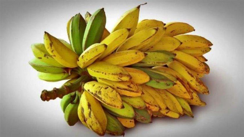 MUZ \n<br>Mideyi seven meyvelerin başında geliyor. Ara öğünlerde birer muz yemek, midedeki yanma hissini ortadan kaldırıyor. Muz, mide enzimleri ve hücrelerinin üretimini de artırıyor.