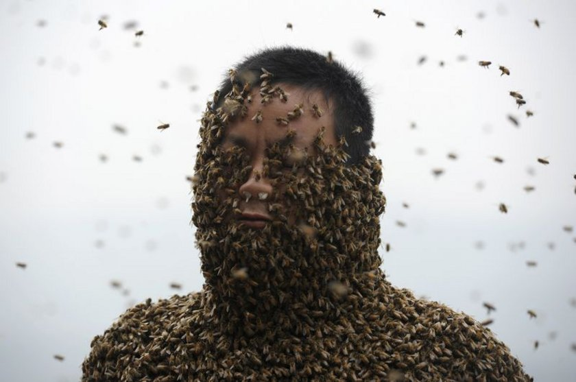 ÇİN'in Çongçing kentinde yaşayan arı yetiştiricisi 34 yaşındaki She Ping, tehlikeli ve zor bir işe kalkıştı.