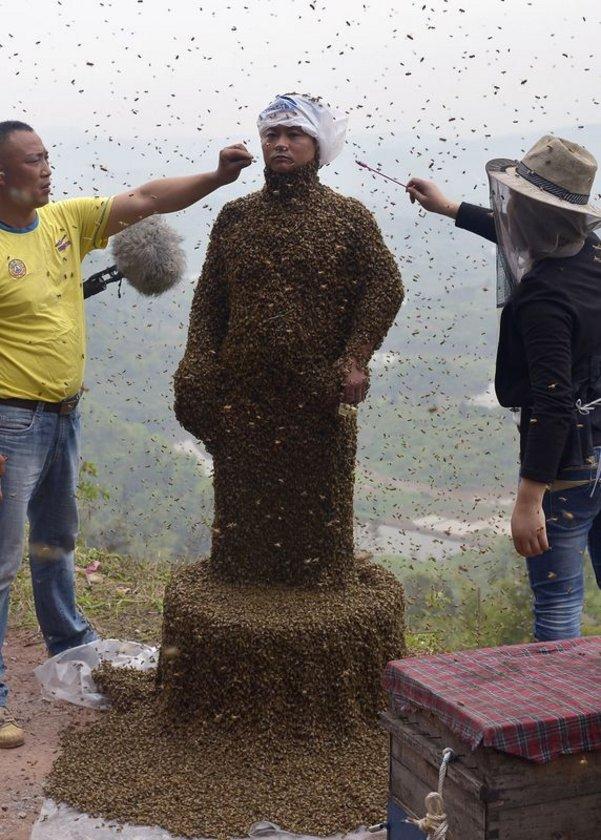Ping'in vücuduna 40 dakika içinde ağılığı 45 kilogramı bulan 460 bin arının konduğu açıklandı.