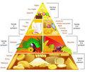 Gün içinde tükettiğiniz besinlerin besin piramidinde önerilen miktarlarda ve ölçüde olmasına dikkat edin