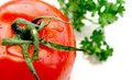 Meyveler, kırmızı ve turuncu sebzeler: Havuç , domates, kabak, kavun, mango, kayısı