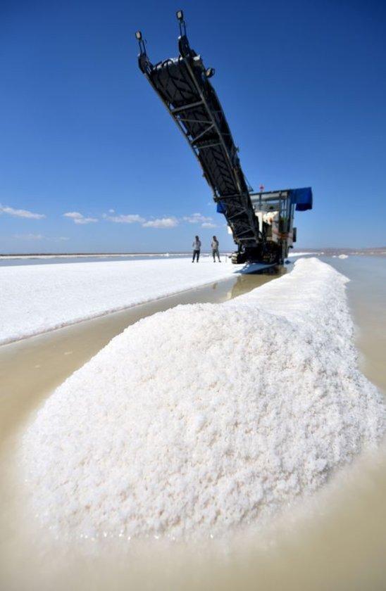 Besin maddesi olması dışında tuz; dericilikte, hayvan besiciliğinde, su yumuşatma sistemlerinde ve kimya sanayisinde yaygın olarak kullanılır.