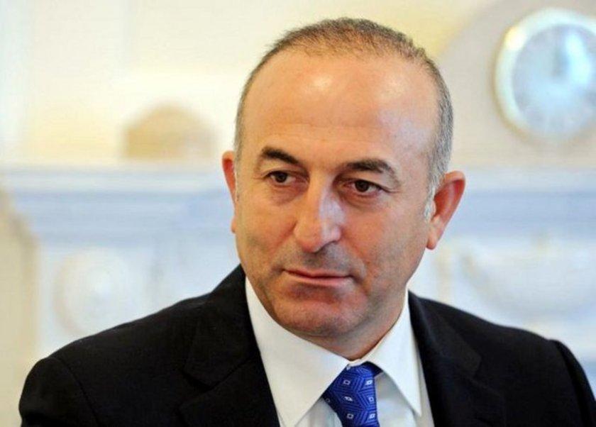 AK Parti kurucu Üyesi olan Çavuşoğlu, 22 ve 23. dönemlerde Antalya Milletvekili seçildi. Çavuşoğlu, 23. Dönemde Avrupa Konseyi Parlamenter Meclis Başkanlığına seçildi.