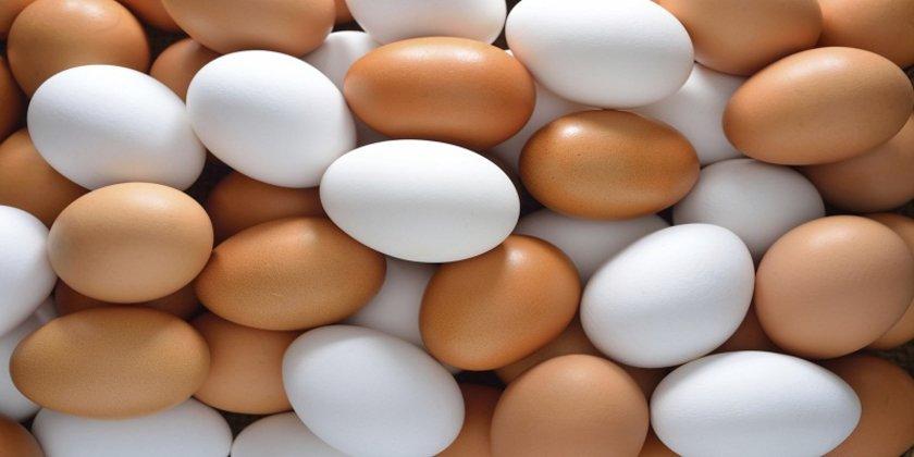 YUMURTA:\n\nA vitamini ve betakarotenden zengin beslenme, iyi kaynaklı protein alımı ve yeterli çinko almak bağışıklık sistemini güçlendirmek için başlıca ilkelerdir. İşte bu üç ilkeyi de fazlasıyla içinde barındıran besin ise; yumurta!