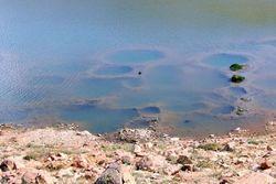 Kartal Gölü defineciler umudu kesince kurtuldu