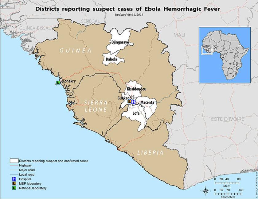 2-Ebola tam olarak nerede: Günümüzde hastalık Orta ve Batı Afrika ülkelerinde yaygın durumda. Bu bölgeler virüslerin hayvan yoluyla taşınmasının en kolay olduğu bölgeler.