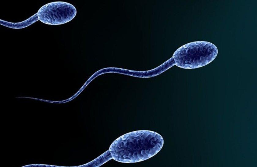 Sperm sayıları zaman içinde önemli derecede değişebilir.