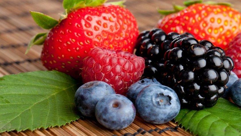 Yaban mersini, frenk üzümü,\nböğürtlen, kiraz ve üzüm gibi meyveler antosiyanin adlı\nantioksidandan zengindir.