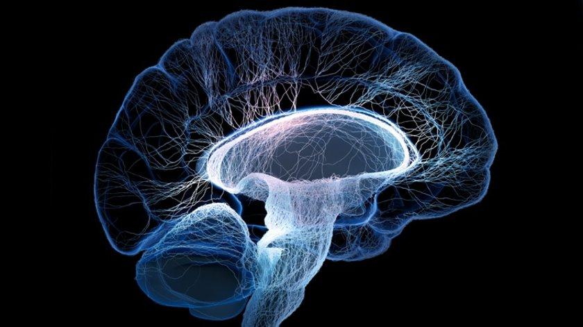 DHA beyin hücreleri\narasında sinyal iletiminde görev alır, balık yağındaki temel yağ\nasitlerinden biridir.