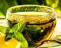 Nanenin yatıştırıcı etkisi özellikle çaya katıldığında kendini göstererek rahatlamanızı sağlar.