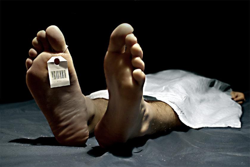 Damar kireçlenmesine bağlı gelişen atardamardaki darlık ve tıkanıklıklar, dünyadaki ölüm nedenlerinden yarısından fazlasından sorumlu olduğundan tedavisi büyük önem taşıyor. \n