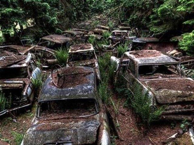 Belçikada Bulunan Dünyanın En Büyük Araba Mezarlığı 1 Diğer