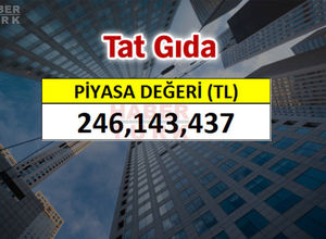 Türkiye'nin en değerli şirketleri