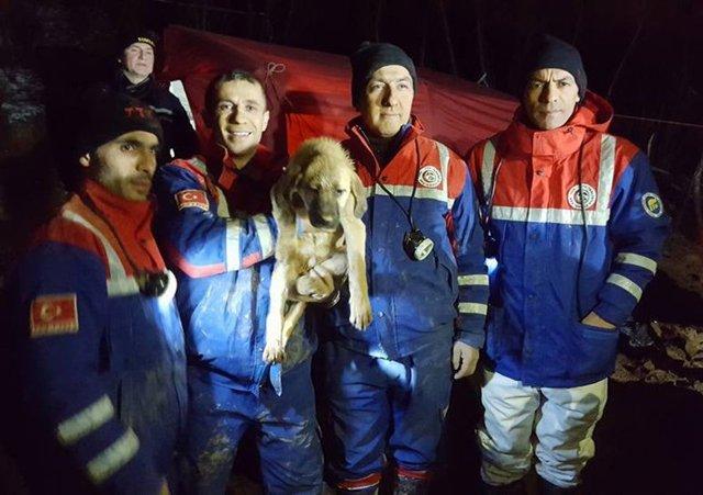 Beykoz'da kuyuya düşen yavru köpek kurtarıldı