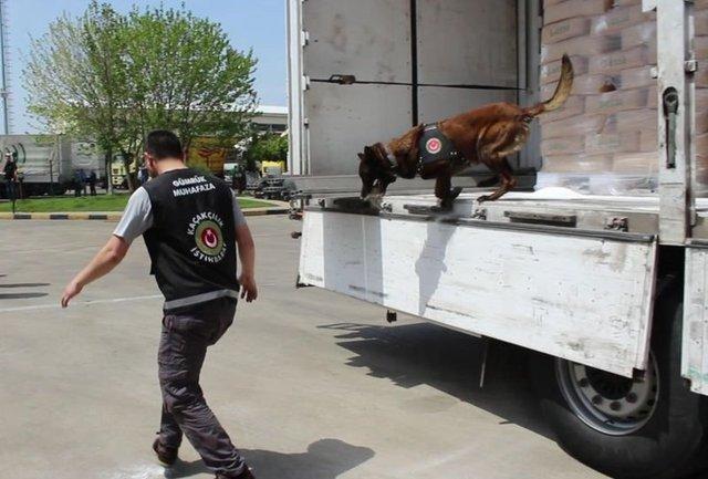 Edirne'nin Hamzabeyli Sınır Kapısı'ndan Bulgaristan'a çıkış yapmaya çalışan TIR'a yapılan operasyonda 78 milyon TL değerinde 775 kilo 75 gram eroin ele geçirildi.