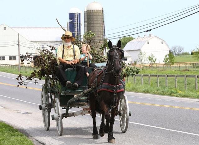 Anadolu Ajansı'nın haberine göre; ABD'de inançları gereği kendilerini modern dünyadan ve teknolojiden soyutlayan Amish'lerin mütevazi yaşam tarzları, insanları adeta zamanda yolculuğa çıkarıyor.