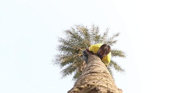Hindistan'ın Haryana eyaletinde yaşayan Mukesh Kumar, ağaçlara ters tırmanıyor!