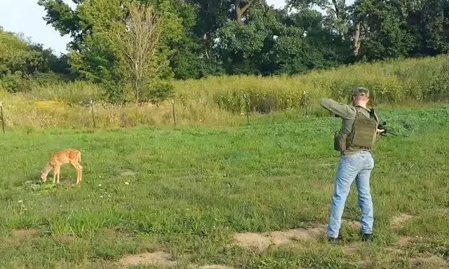 Doğası gereği çok dikkatli olan ve kendini tehlikede hissettiği zaman oradan hızlı bir şekilde uzaklaşan geyik bu sefer öyle yapmadı.