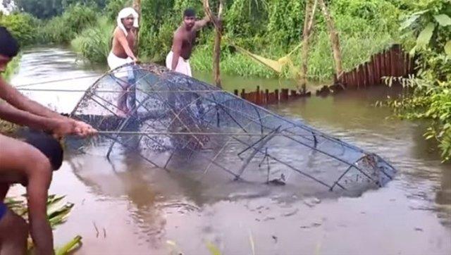 İşte balıkçıların sıra dışı av taktiği...