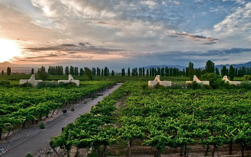 <p>8. Cavas Wine Lodge, Mendoza, Arjantin</p>