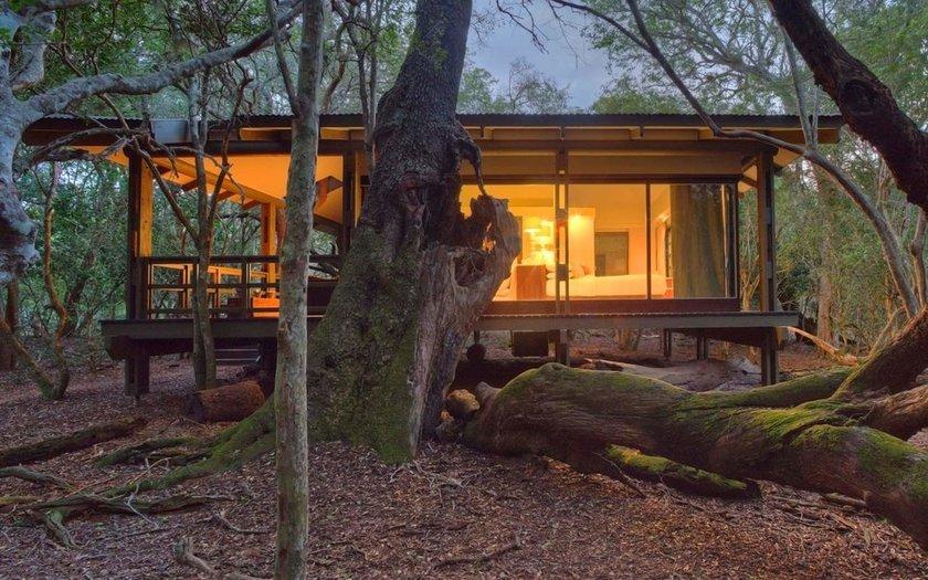 <p>44. andBeyond Phinda Forest Lodge, Phinda Koruma Bölgesi, South Africa</p>
