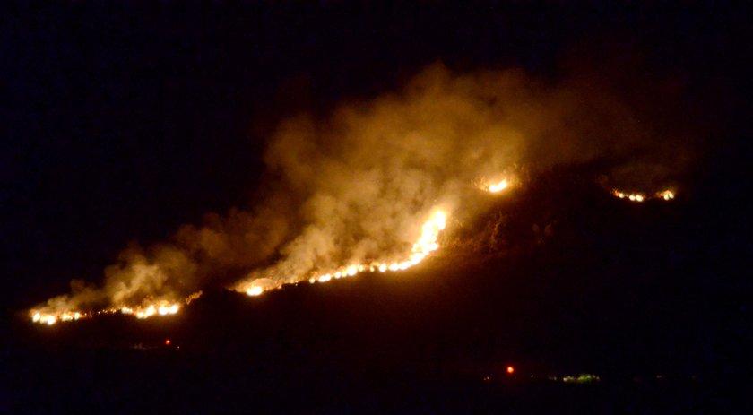 <p>Muğla'nın Bodrum ilçesinde makilik alanda çıkan ve civardaki yerleşim yerlerini de tehdit eden yangın, itfaiye ve orman ekiplerinin yaklaşık 12 saatlik çalışmasının ardından güçlükle kontrol altına alınabildi.</p>